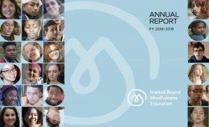 iBme 2018-19 Annual Report Blog Post