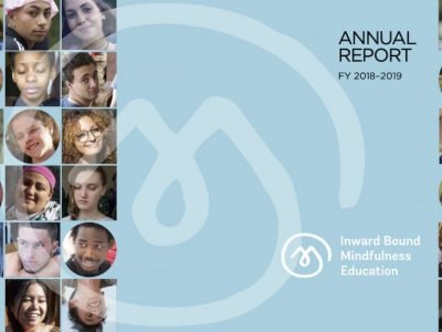 Stand Proud with Us: iBme Annual Report 2018-2019