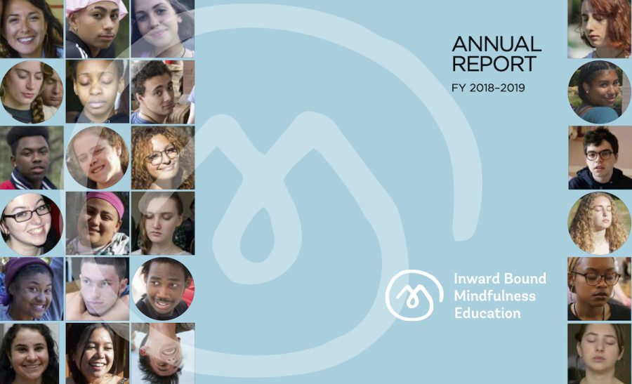 iBme Annual Report
